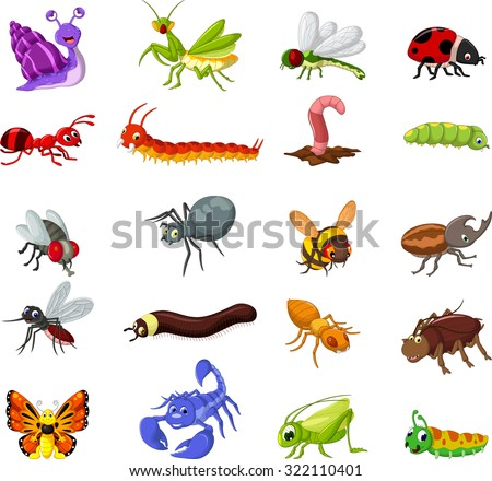 collection of insects cartoon for you design - stock vector