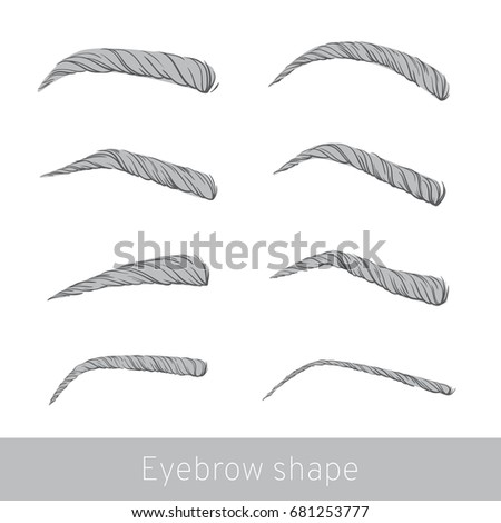 collection isolated women s sketch eyebrows stock vector royalty