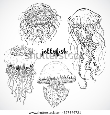 Collection of jellyfish. Vintage set of black and white hand drawn marine fauna. Isolated vector illustration in line art style.Design for summer beach, decorations. - stock vector