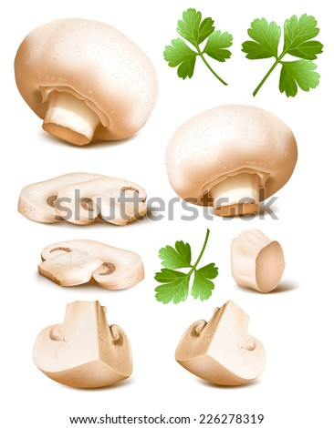 Collection of mushrooms with parsley. Vector illustration. - stock vector