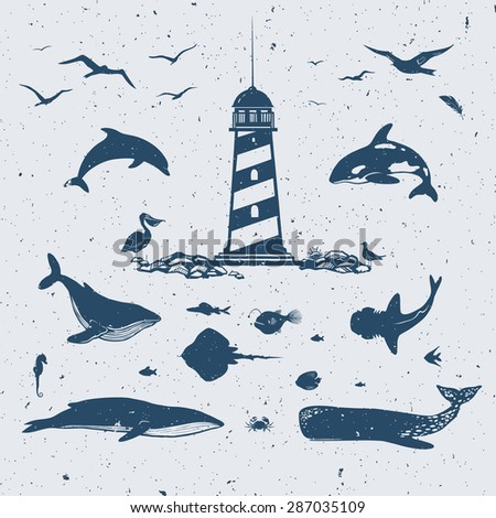 collection of oceanic and sea animals: whales, dolphins, sharks, seahorses and sea birds - stock vector
