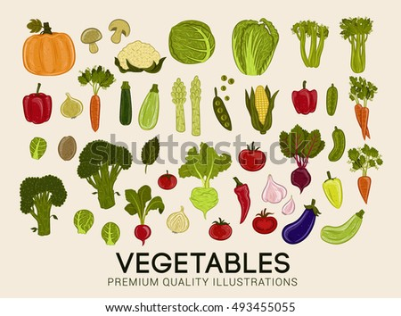 Collection Of Premium Quality Vector Illustrations Of Vegetables