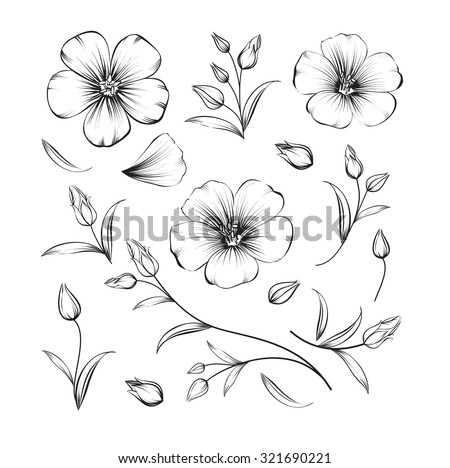 Collection of sakura flowers, set. Cherry blossom bundle. Black flowers of sakura isolated over white. Flowers contours collection. Vector illustration. - stock vector