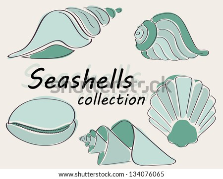 Collection of seashells drawn in abstract way in vector - stock vector