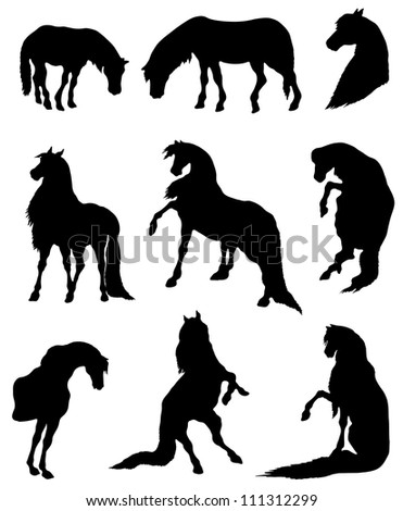 Collection of silhouettes of horses - stock vector