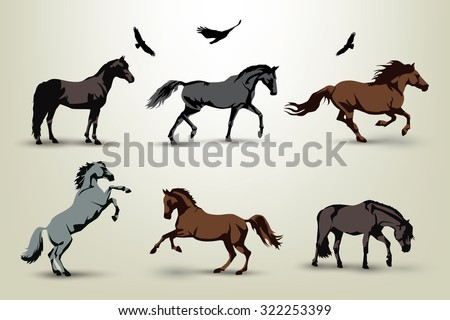 Collection of six wild horses and birds illustration - stock vector