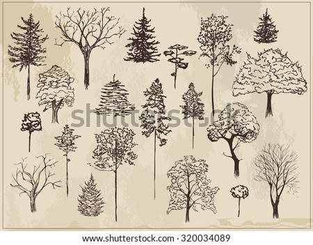 Collection of sketch ink trees  - stock vector
