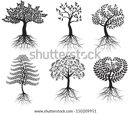 Collection of trees with roots - stock vector