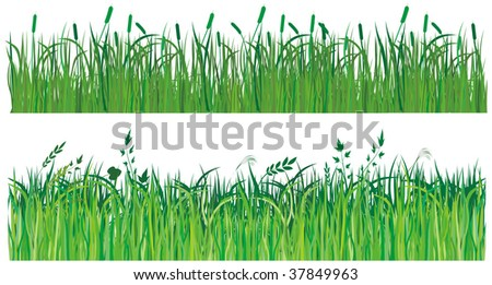 Collection of vector green grass - stock vector