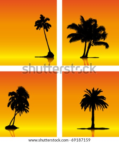 Collection of vector palm tree silhouettes on sunset background - stock vector