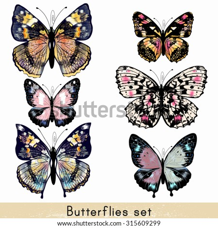 Collection of vector realistic colorful butterflies for design - stock vector