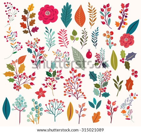 Collection of Vintage flowers and leaves. Set of illustrations with autumn leaves, brunches, berries and flowers, berries, leafs, wreaths. Design elements for cards, invitations, tags and labels - stock vector