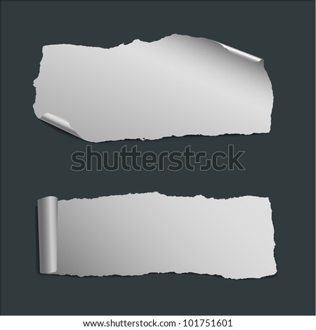 collection of  white vector pieces of paper - stock vector