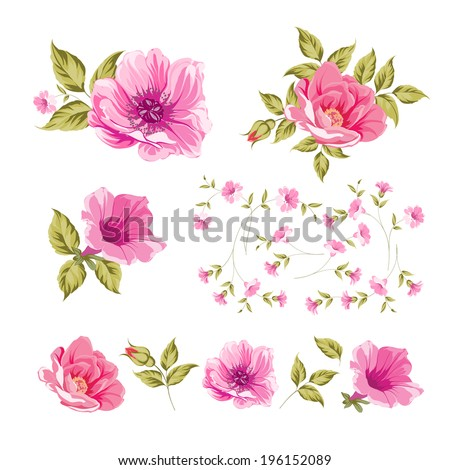 Collection set of flower heads isolated on white background. Vector illustration. - stock vector
