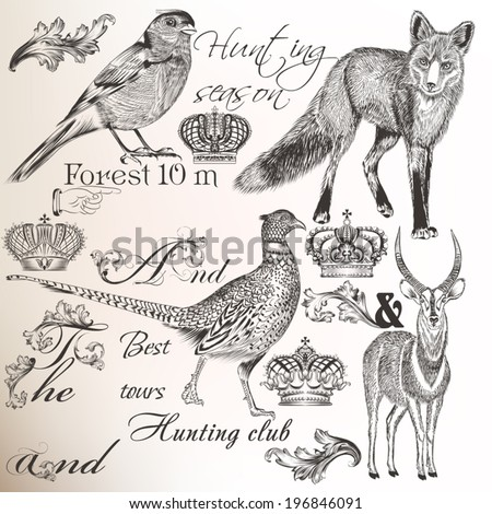 Collection  vector animals and vintage elements  for design - stock vector