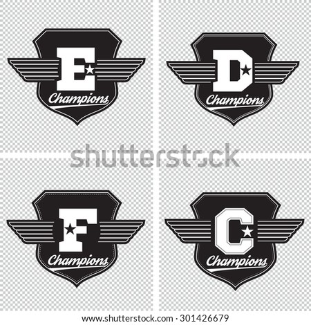 College champions university division team sport label typography, t-shirt graphics for apparel - stock vector