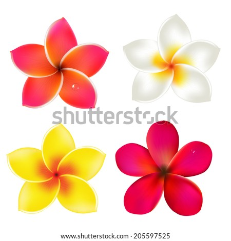 Color Frangipanis Set, With Gradient Mesh, Vector Illustration - stock vector