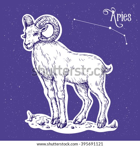 Color illustration of the zodiac sign aries with text Aries and constellation at the sky background. Vector hand drawn sketch of the ram. Image for calendar, poster, almanac, horoscope, astronomy. - stock vector