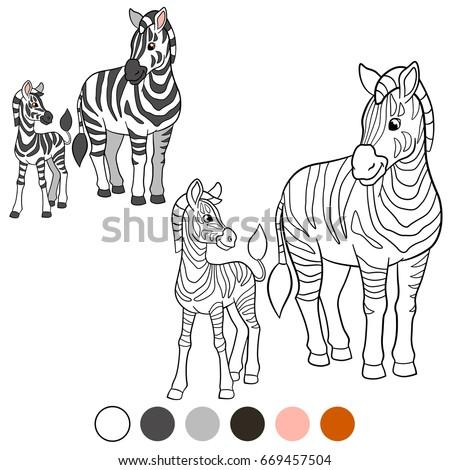 Color Me Zebra Mother Zebra Her Stock Vector 669457504