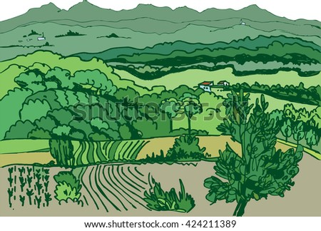 color picture of landscape with vineyards