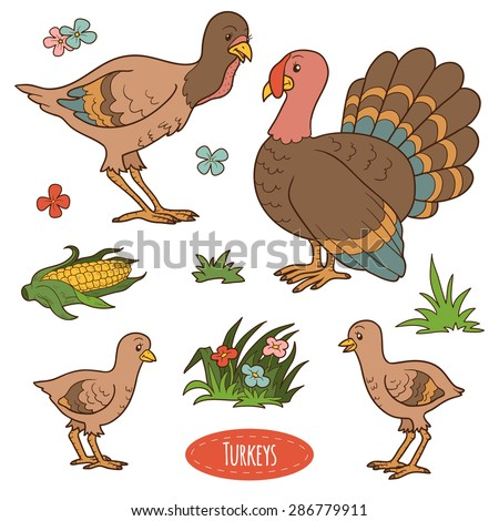 Color set of cute farm animals and objects, vector family turkeys - stock vector