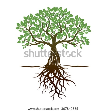 Color Tree and Roots. Vector Illustration. - stock vector