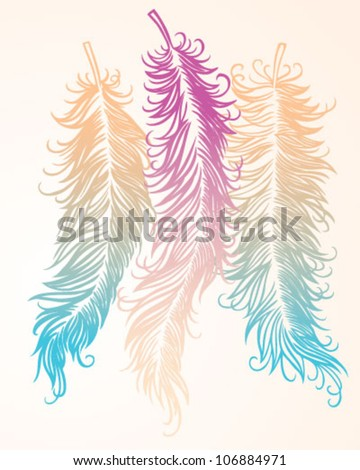 Color Vector Feathers (Hand Drawn) - stock vector