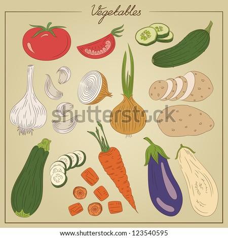 Color vintage vegetables illustration - stock vector