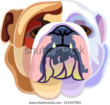 Colored bulldog's head isolated on white background - stock vector