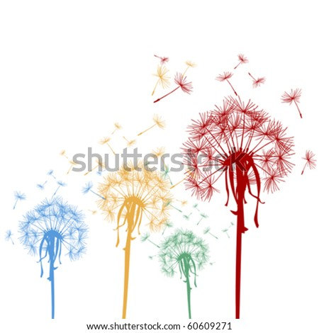 Colored dandelions - stock vector