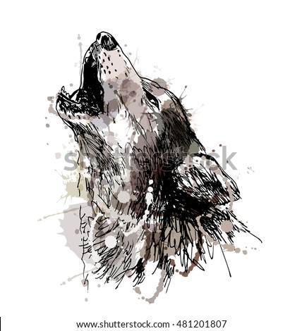 Black Wolf Howling Drawing Colored Hand Dr...