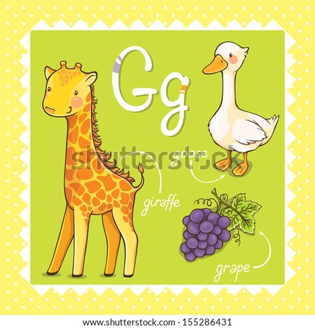 Colorful and cute kids alphabet: letter G. - stock vector