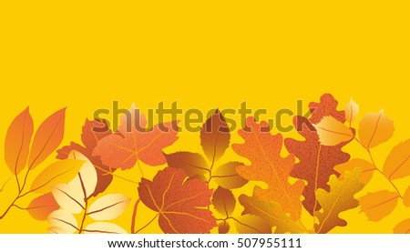 Colorful autumn leaves arrange on yellow background