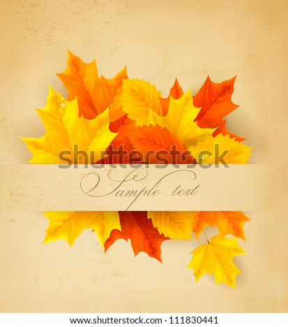 Colorful autumn leaves on a old paper  Back to school background  Vector - stock vector