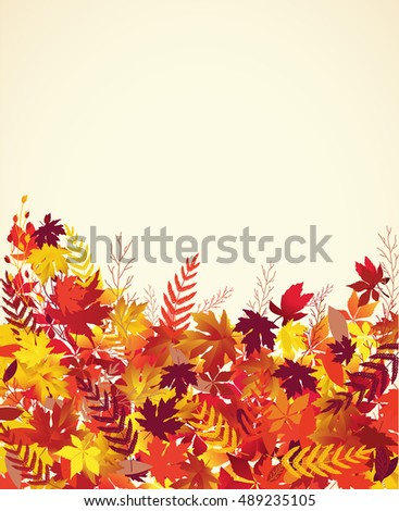 Colorful autumn leaves, vector background