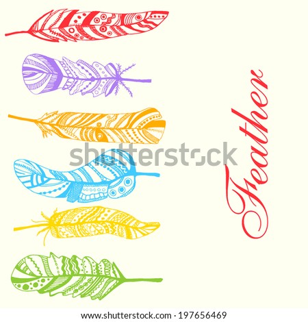 colorful feathers. vector illustration.