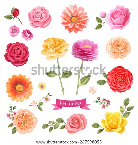 Colorful flowers vector illustration - stock vector
