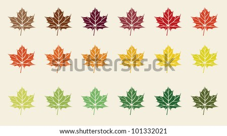 colorful maple leaves - stock vector