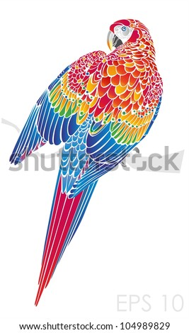 Colorful parrot - stock vector