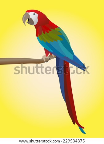 colorful parrot on yellow background - vector illustration - stock vector