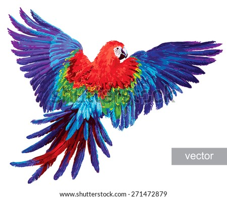 Colorful parrots. Beautiful macaw  - stock vector