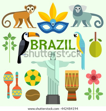 a background information of brazil Brazil is the fifth largest country by landmass in the world with 535 million square miles (845 million square km) it is the largest country in both south america and the entire latin american region.