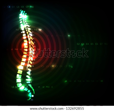 Colorful spine. Backache concept. Illustration with human spine, anatomy with red color at the middle of the spine. - stock vector