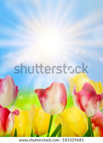 Colorful spring flowers tulips. And also includes EPS 10 vector - stock vector