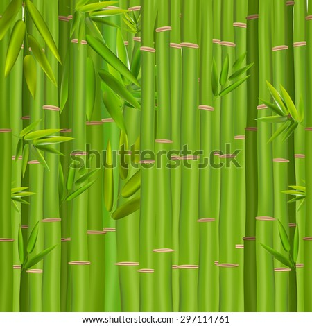 Colorful Stems and Bamboo Leaves Background. Vector Illustration. EPS10