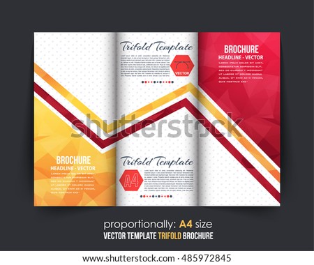 Colorful Tri-Fold Brochure Design. Corporate Leaflet, Cover Template