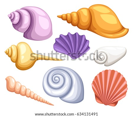 Sea Shell Stock Images Royalty Free Images Amp Vectors