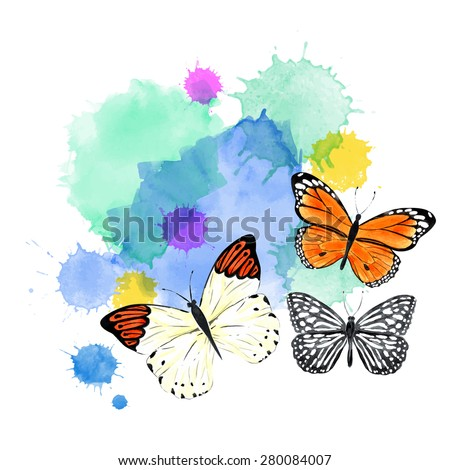 Colorful Vector Background With Butterflies Painting Watercolors Set Summer Banner Isolated