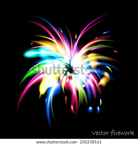 Colorful vector firework. Eps10 file. - stock vector