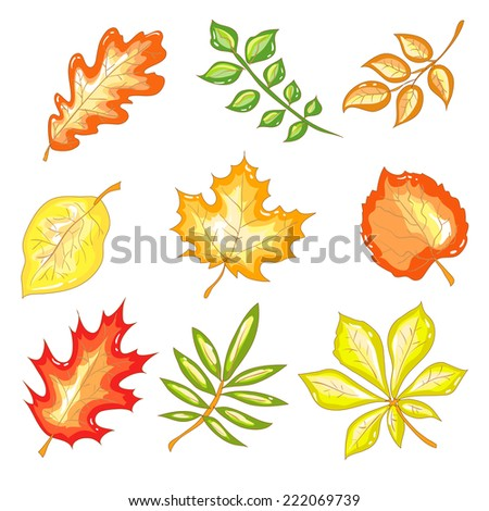Colorful vector set of autumn leaves on a transparent background - stock vector